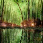 Ekolojik Mimari Proje (23)