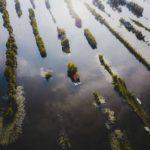 Ekolojik Mimari Proje (4)
