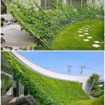 Yenilebilir Mimari Proje (60)